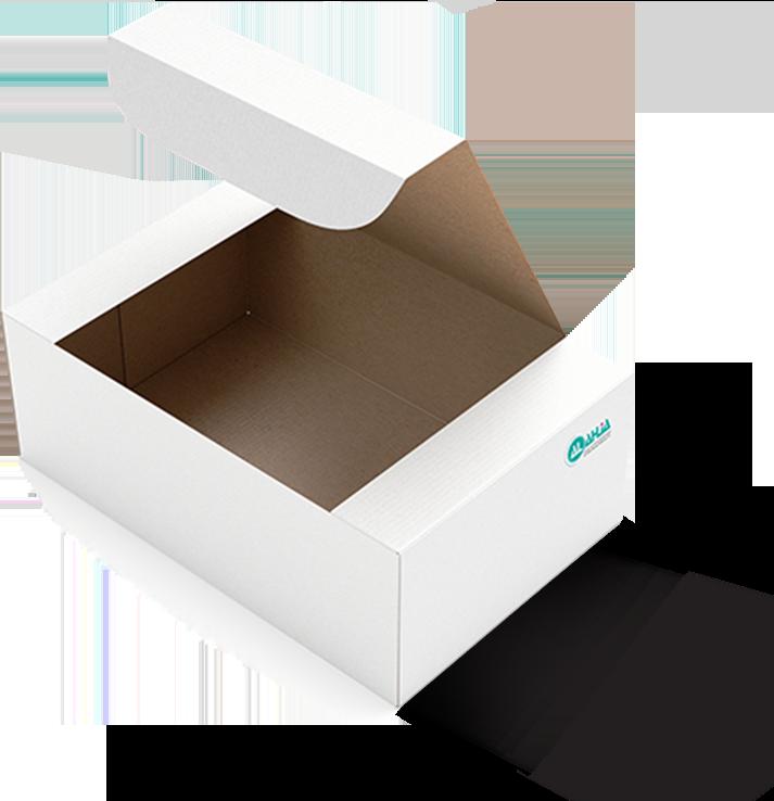 Food Pckaging Box №1